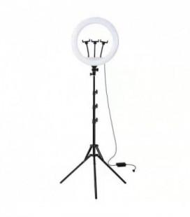 Telefono laikiklis Lamp tripod kit RL18-150 juodas 1.50m